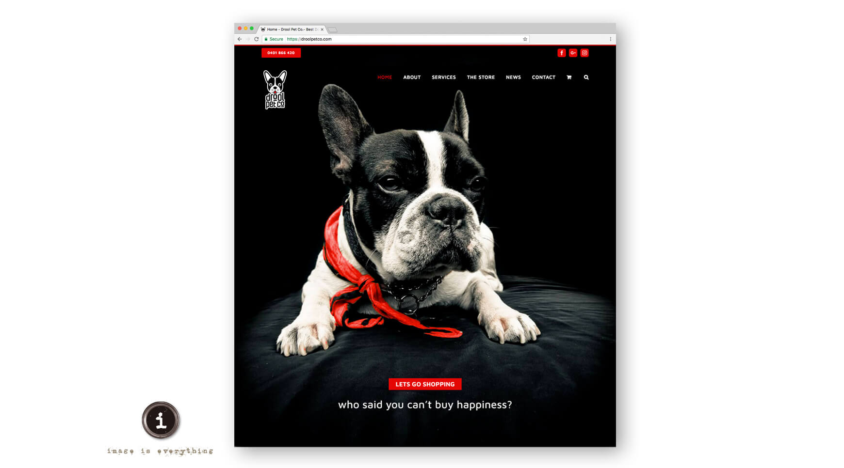 Icon Graphic Design Adelaide - Drool Pet Co. website home page.