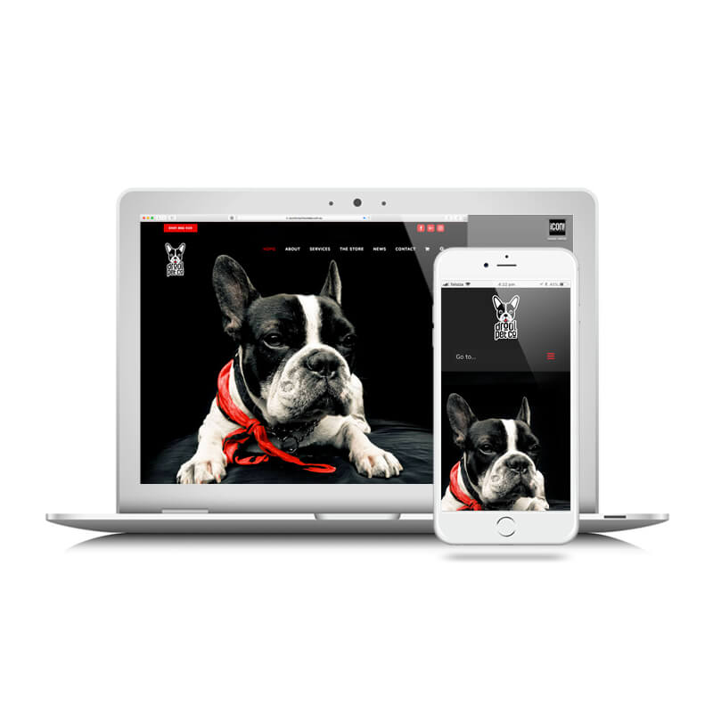 Icon Graphic Design Adelaide - Drool Pet Co. website image on Laptop and iPhone.