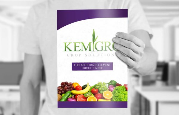 Icon Graphic Design Adelaide - business card design page image of Kemgro brochure front cover
