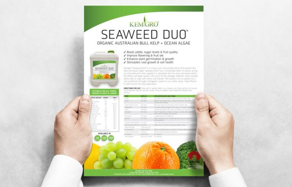 Icon Graphic Design Adelaide - business card design page image of Kemgro Seaweed Duo Flyer.