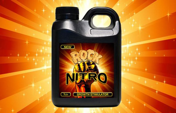 Icon Graphic Design Adelaide - packaging page image of Rock Nitro label designs.