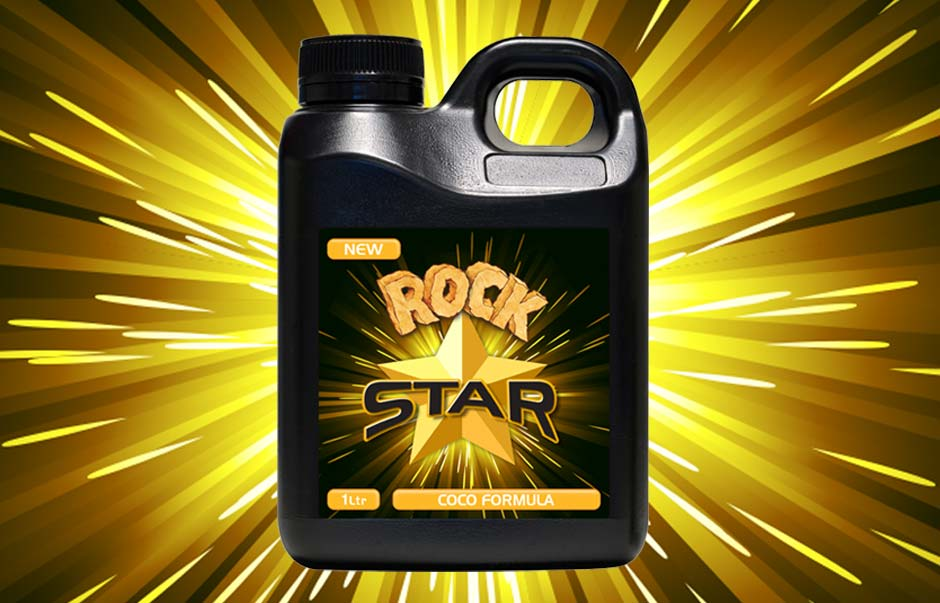 Icon Graphic Design Adelaide - packaging page image of Rock Star label designs.